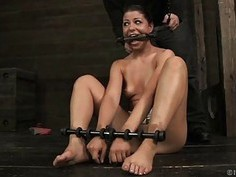 Breasty hotty loves getting bizarre pussy torture