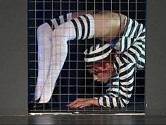 Caged bird
