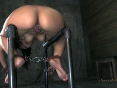 Immobilized slut Vicki Chase gets attached to metal bars and sucks a cock